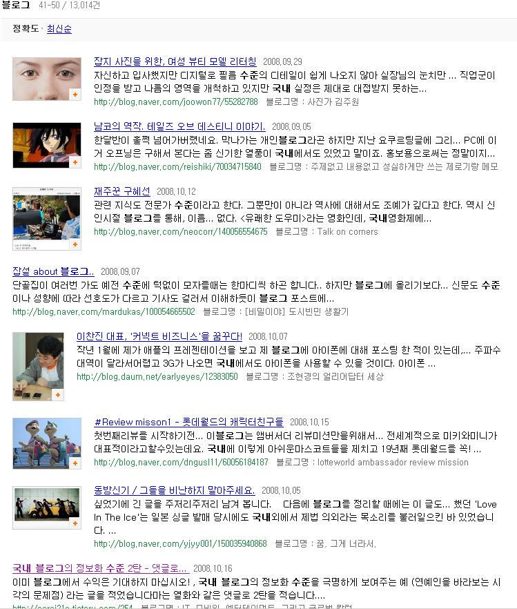 네이버에 '국내 블로그 수준'이라는 검색어를 줬을때 검색되는 예