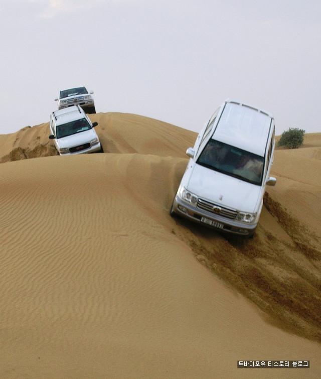 두바이 사막에서 즐기는 롤러코스트 여행 DUNE BASHING