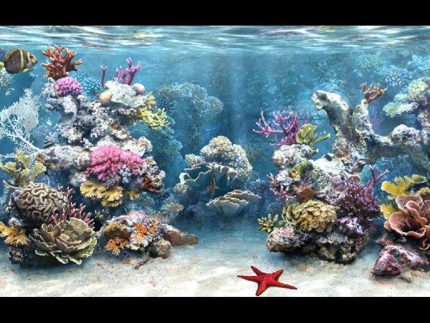 Sim Aquarium, 수족관 보호기, 수족관 화면 보호기, 수족관 화면보호, 수족관 화면보호기, 수족관 화면보호기 다운, 수족관 화면보호기 다운로드, 스크린세이버, 아쿠아 화면보호기, 아쿠아리움, 화면보호기, Screen Saver,