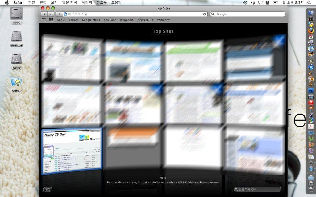 Safari4의 Top Sites 표시 기능