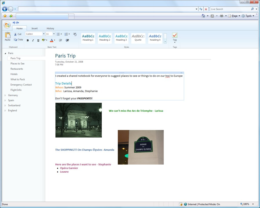 ms office web component(OneNote)