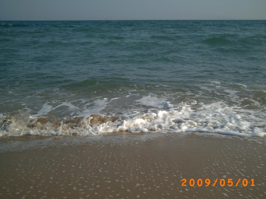 바다가 없으면 이 세상에 다시 오자