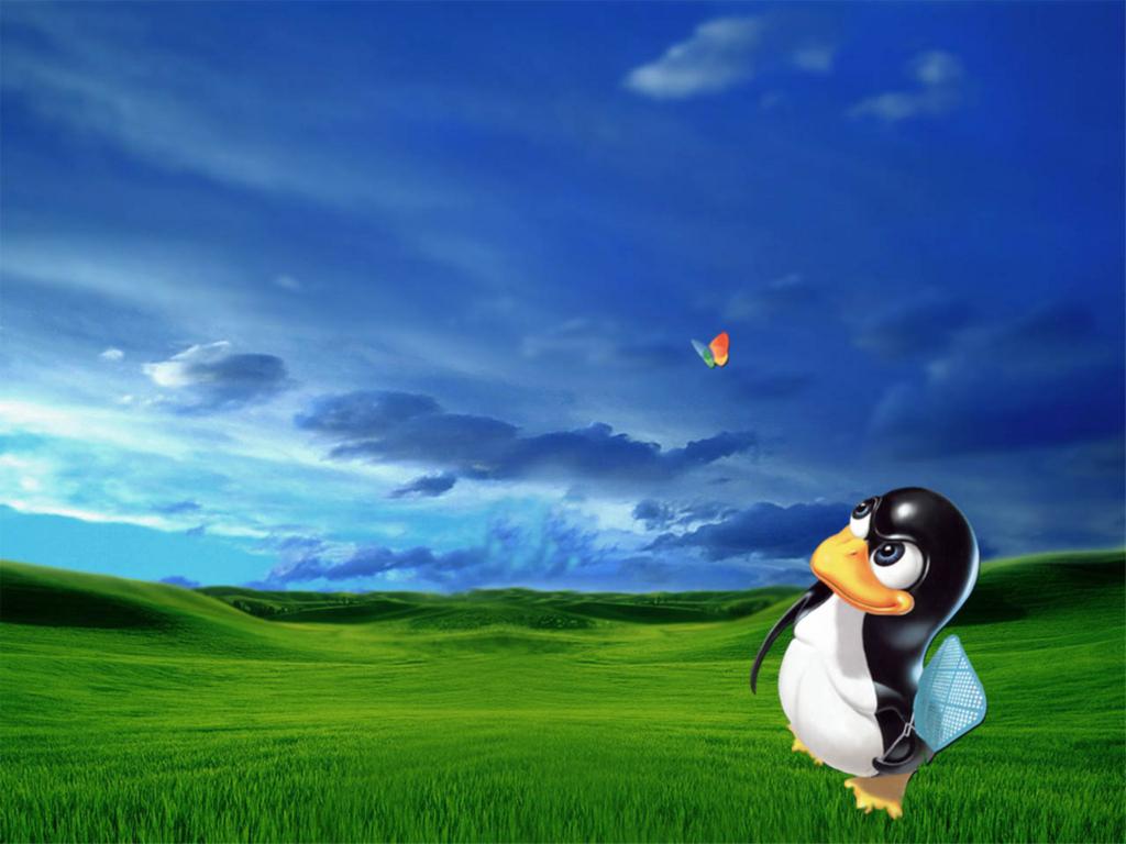 운영체제 바탕화면 이미지 - 윈도우즈, 맥, 파폭 고화질 이미지