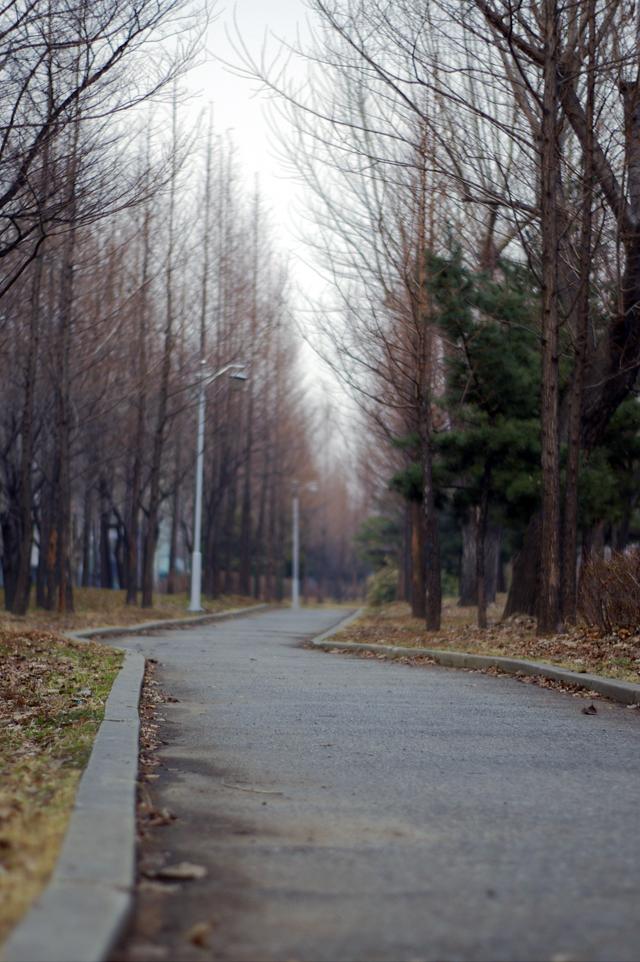 사람은 평생 길을 찾아 앞으로 나아간다.