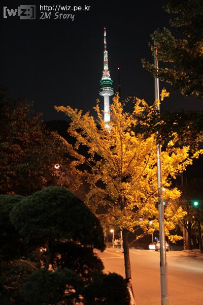 남산 가을 밤
