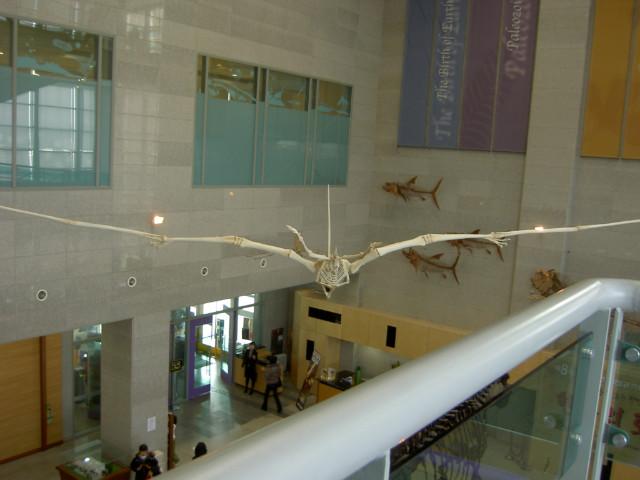 서대문 자연사 박물관