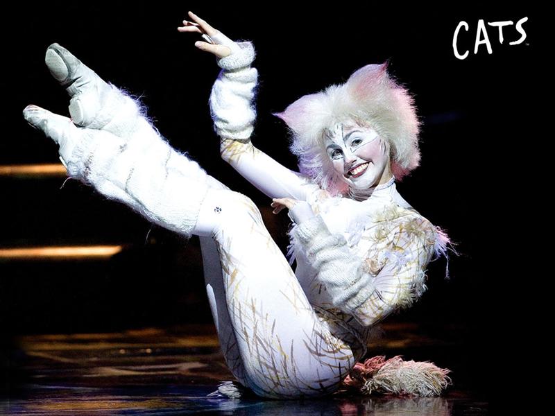 Cats Musical Ab Wieviel Jahren